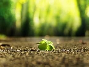 Glück_Resilienz